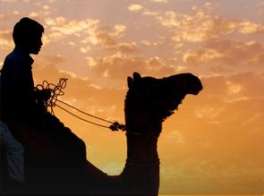 Paseo Camello en Mojacar